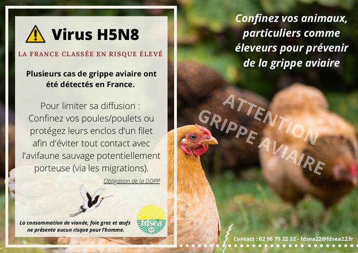 Virus H5N8 0